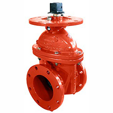 FP Flanged Valves