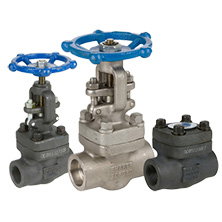 Forged & SS Steel Valves