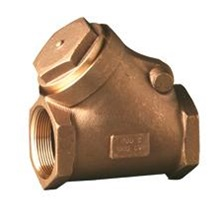 4037J Clapet anti-retour à battant 2po Fileté Bronze 125 PSI